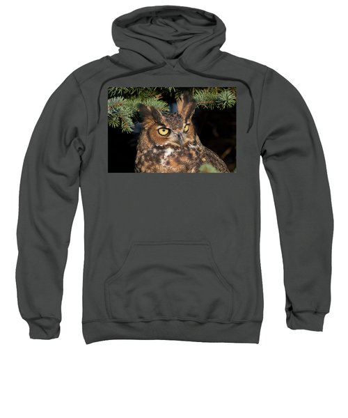 Great Horned Owl 10181802 Sweatshirt