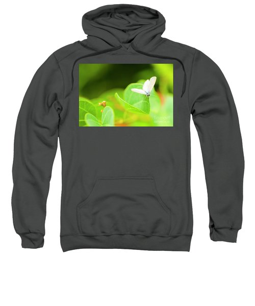 Green Wilderness Sweatshirt