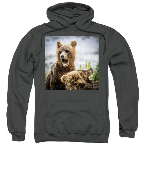 Grizzly Cubs Looking For Their Mum Sweatshirt