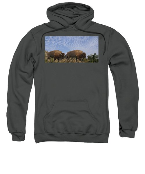 Group Of Bison Walking Against Rocky Mountains  Sweatshirt