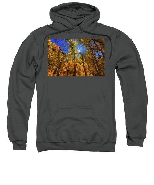 Happy Fall Sweatshirt