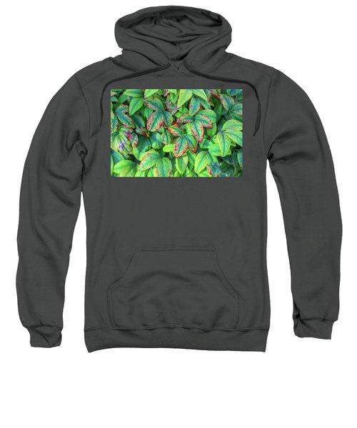 Harmony In The Garden Sweatshirt