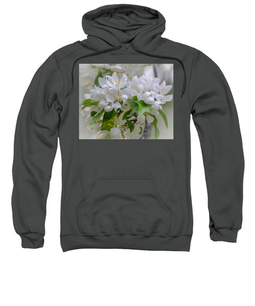 Heavenly Blossoms Sweatshirt