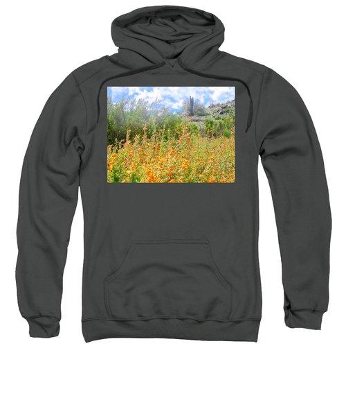 Heavenly Home In Arizona Sweatshirt