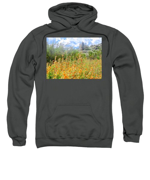 Heavenly Home In Arizona Sweatshirt