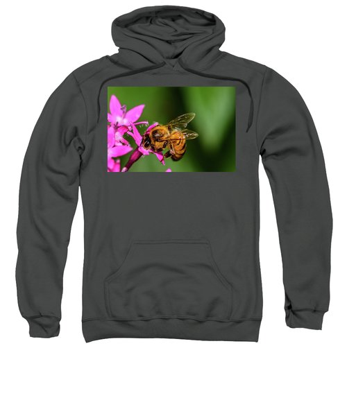 Honey Bee Sweatshirt