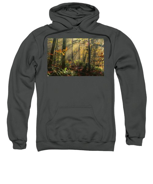 Horizontal Rays Of Sun After A Storm Sweatshirt