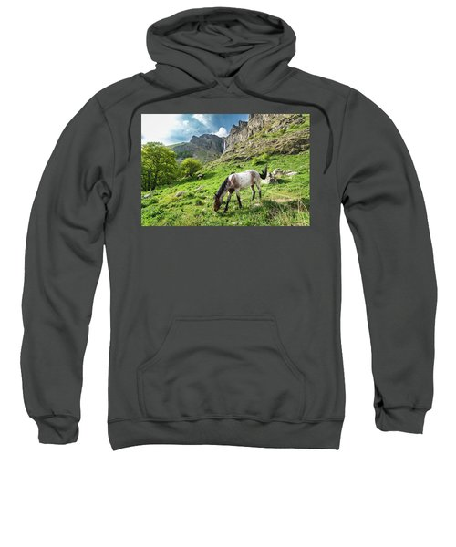 Horse On Balkan Mountain Sweatshirt