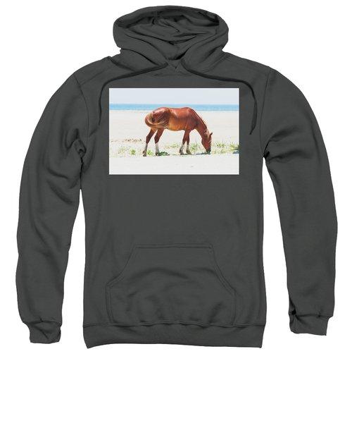 Horse On Beach Sweatshirt