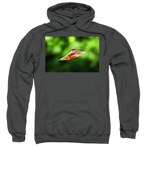 Hummingbird Flying Sweatshirt