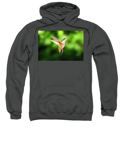 Hummingbird Hovering Sweatshirt