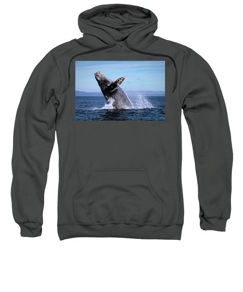 Humpback Breaching - 01 Sweatshirt
