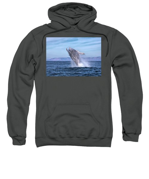 Humpback Breaching - 02 Sweatshirt