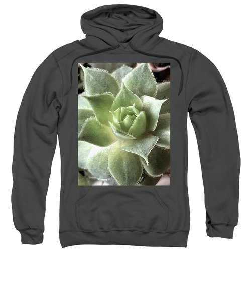 Imaginary Monsters Sweatshirt