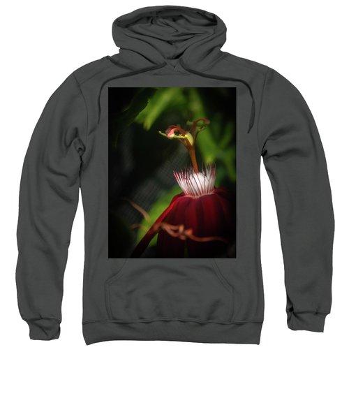 Inner Light Sweatshirt