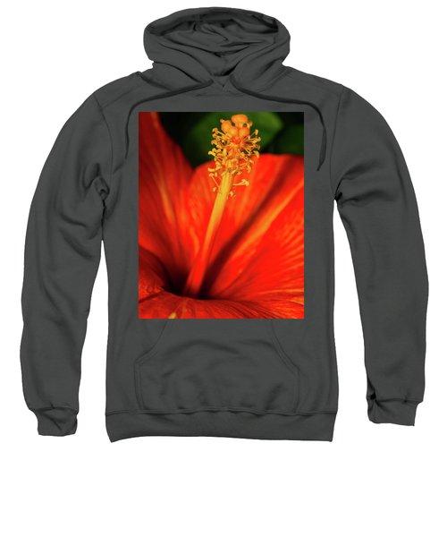Into A Flower Sweatshirt