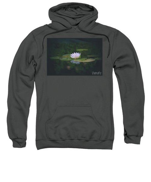 Its A Beauty Sweatshirt