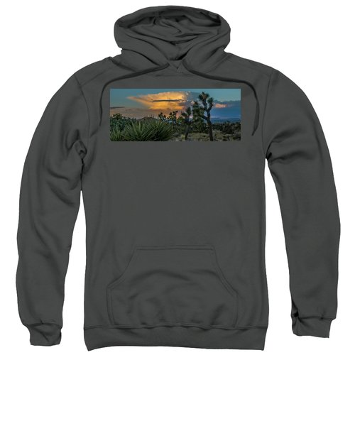 Joshua Tree Thunder Sweatshirt