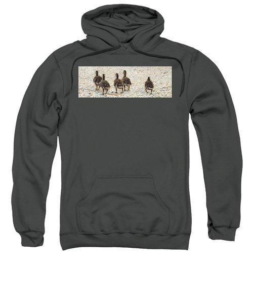 Just Waddling Sweatshirt