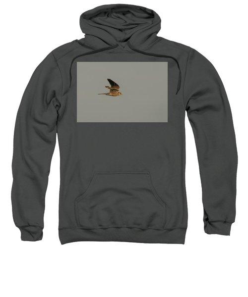 Kestrel Sundown Flyby Sweatshirt