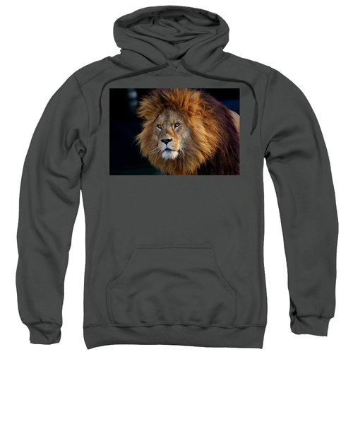 King Lion Sweatshirt