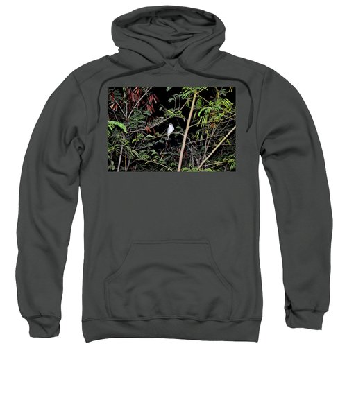 Kingbird At Night Sweatshirt