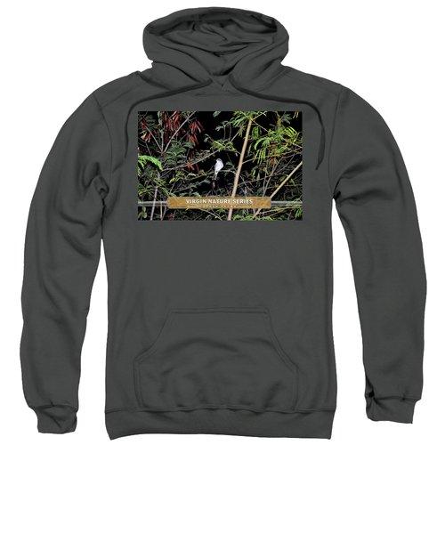 Kingbird In Casha - Virgin Nature Series Sweatshirt