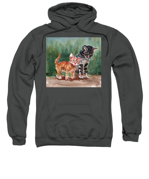 Kittens Sweatshirt
