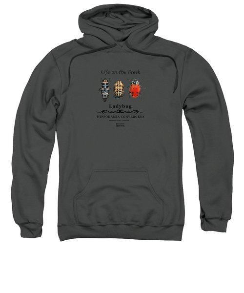 Ladybug Life Cycle Sweatshirt