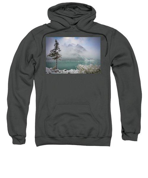 Lake Louise Lonesome Tree   Sweatshirt