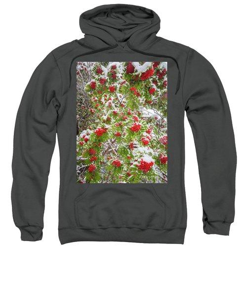 Lake Louise Rowan Sweatshirt