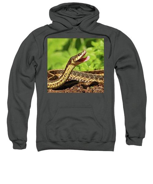 Laughing Snake Sweatshirt