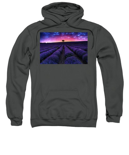 Sweatshirt featuring the photograph Lavender Dreams by Evgeni Dinev