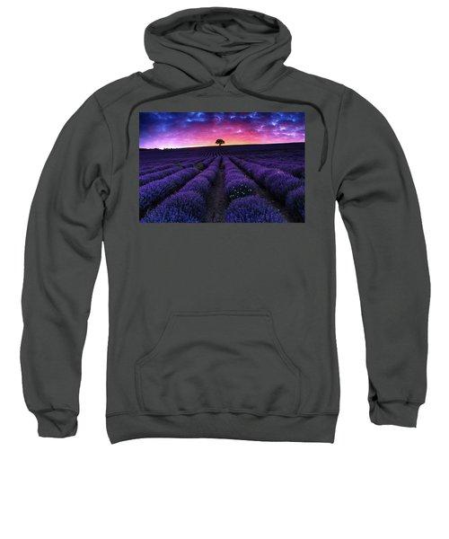 Lavender Dreams Sweatshirt