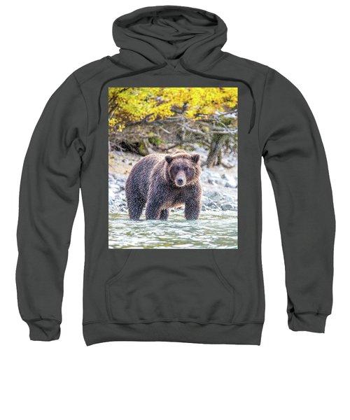 Lazy C 2  Sweatshirt