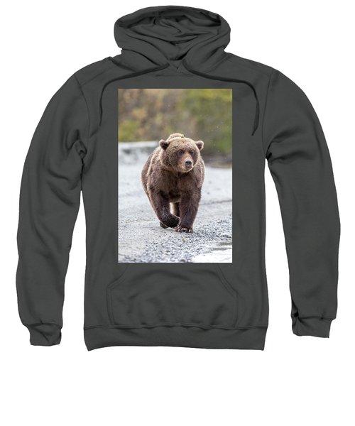 LC Sweatshirt