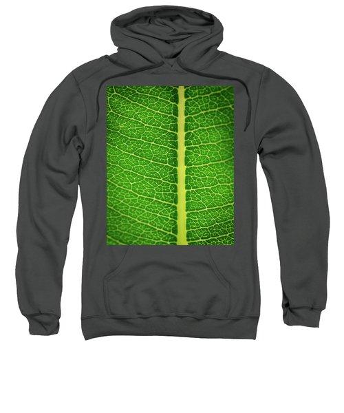 Leafy Detail Sweatshirt