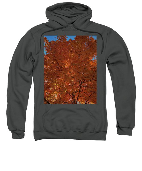 Leaves Of Fire Sweatshirt