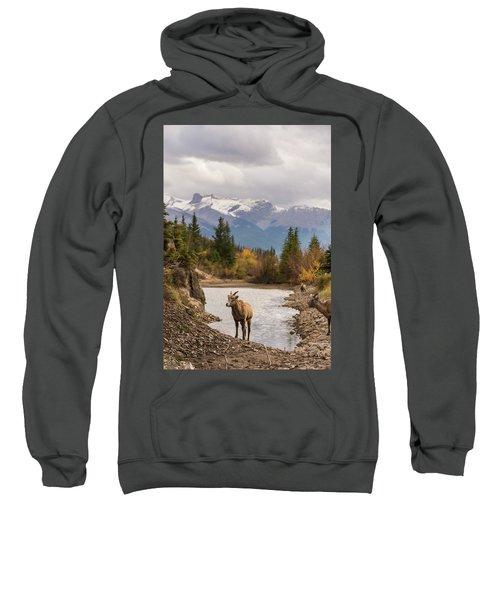 Little Bighorn Sweatshirt