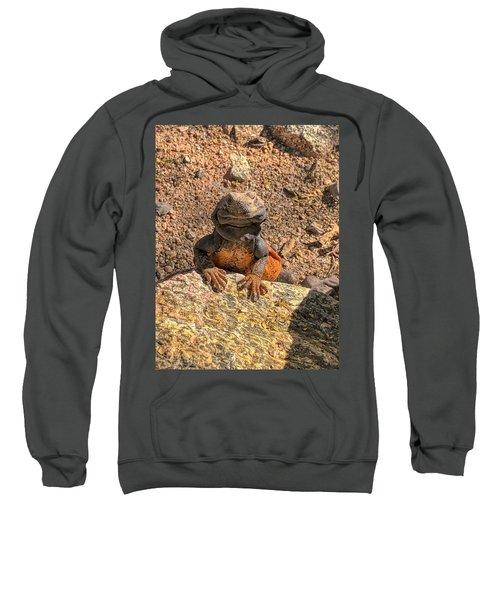 Lizard Portrait  Sweatshirt