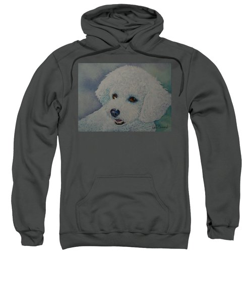 Lovely Lacy Sweatshirt