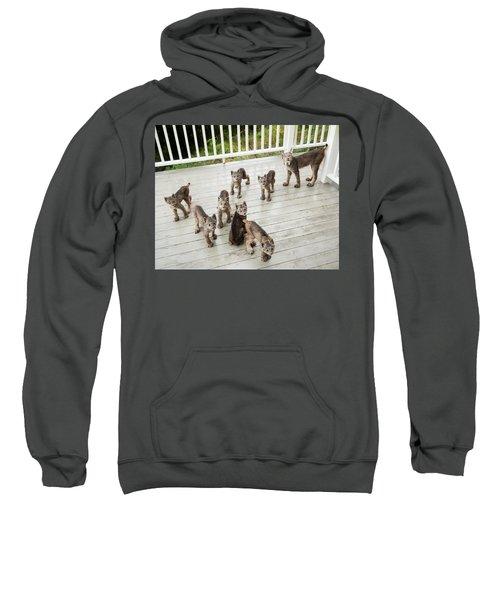 Lynx Family Portrait 11x14 Sweatshirt