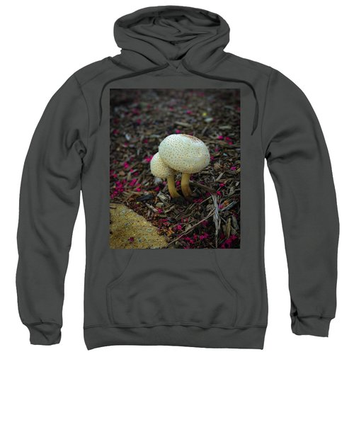 Magical Mushrooms Sweatshirt