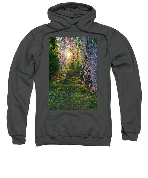 Magnolia Tree Sunset Sweatshirt