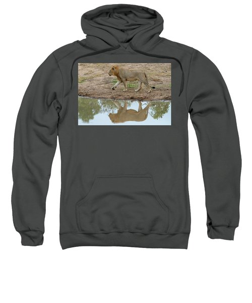 Male Lion And His Reflection Sweatshirt