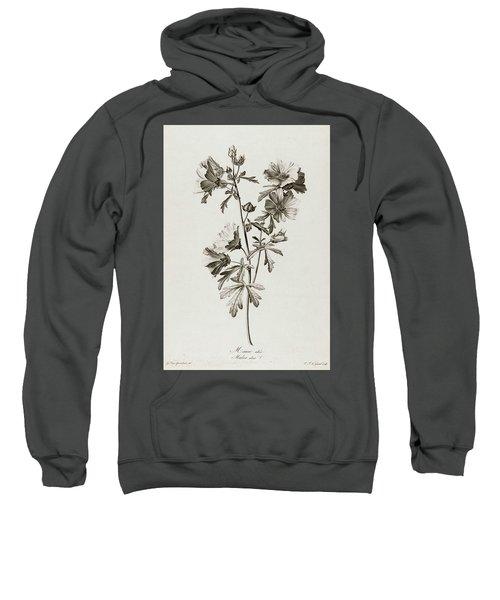 Malva Alcea, 1801 Sweatshirt