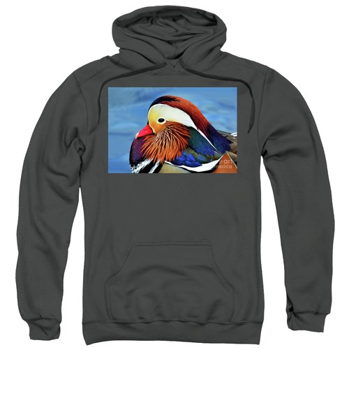 Mandarin Duck Portrait 2 Sweatshirt