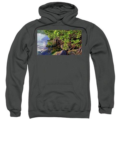 Mangrove Bath Sweatshirt
