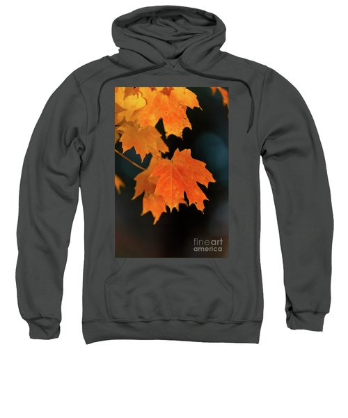 Maple-1 Sweatshirt