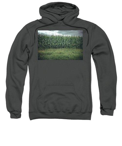 Maze Field Sweatshirt
